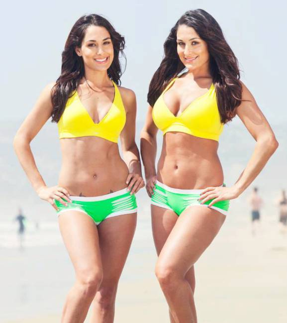 bella-twins-nikki-brie-november-21-1