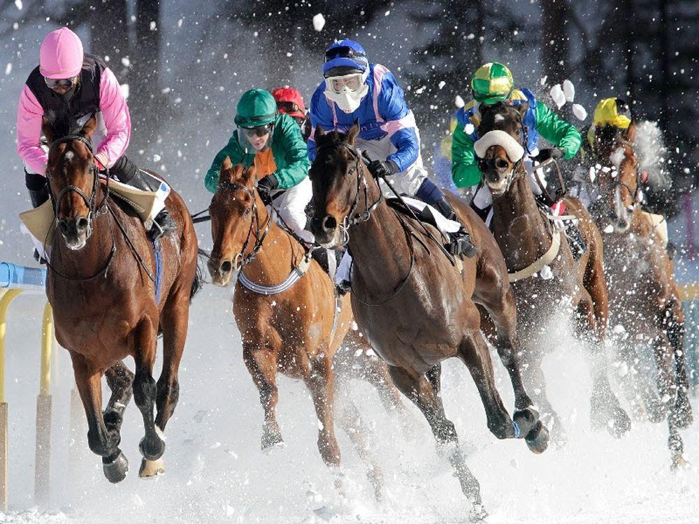 Ιππείς και άλογα σε δράση