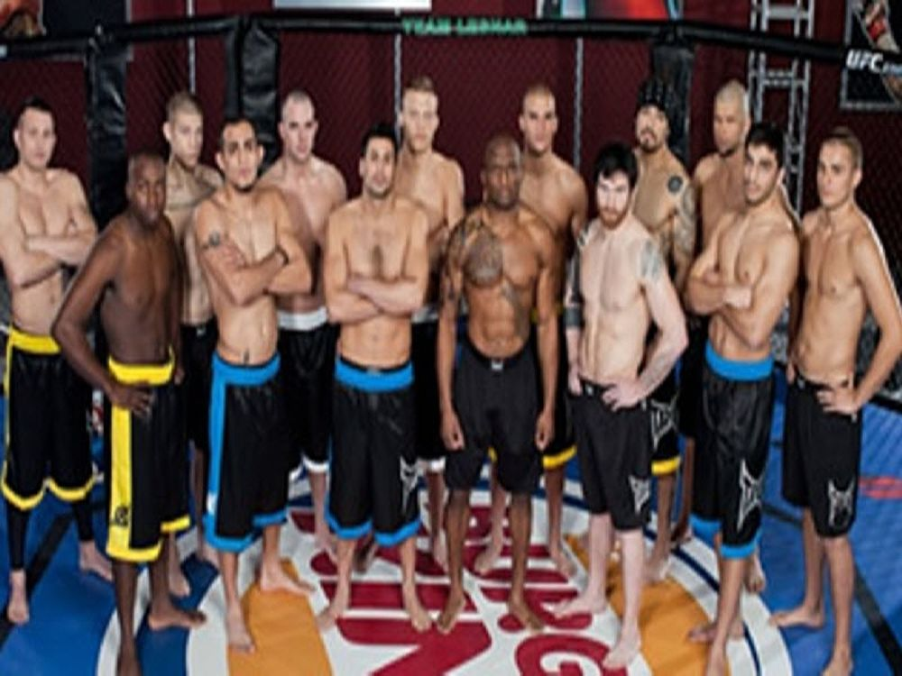 Ρόστερ ριάλιτι UFC