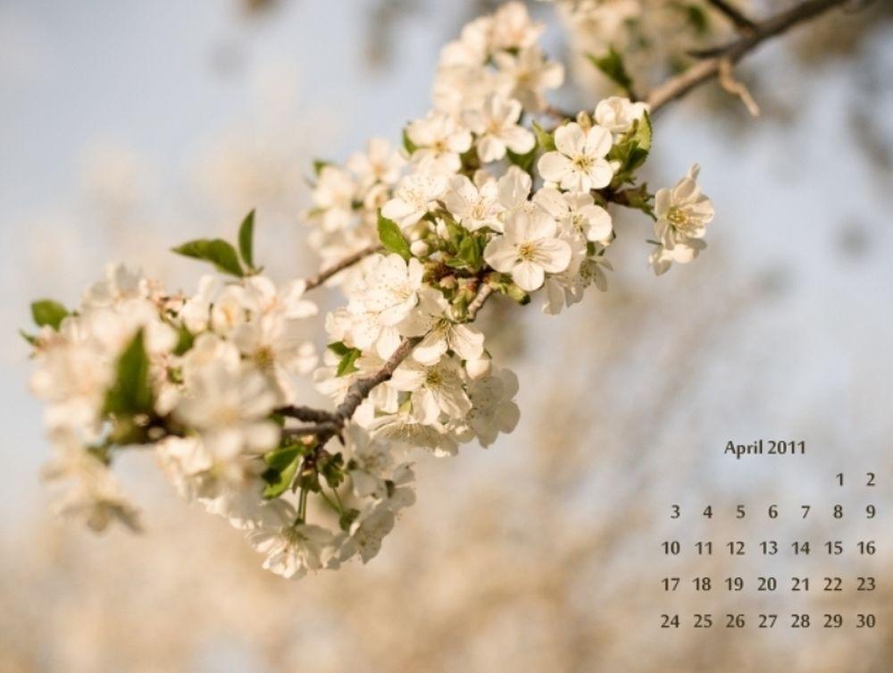 Κοσμικό Ημερολόγιο
