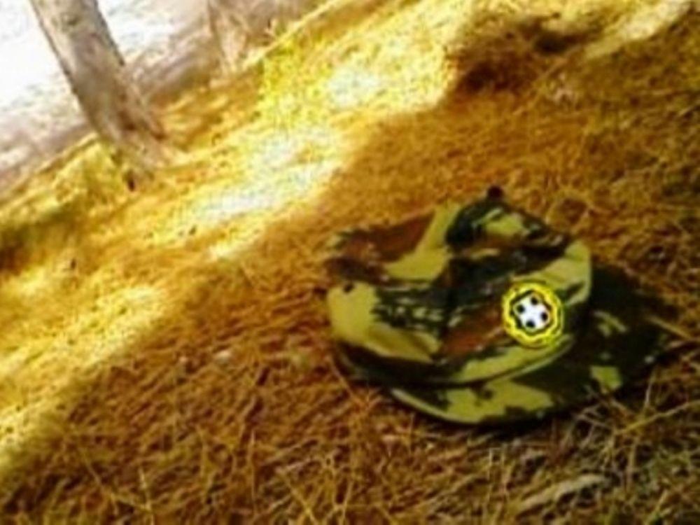 Τραυματισμός στρατιώτη με όπλο