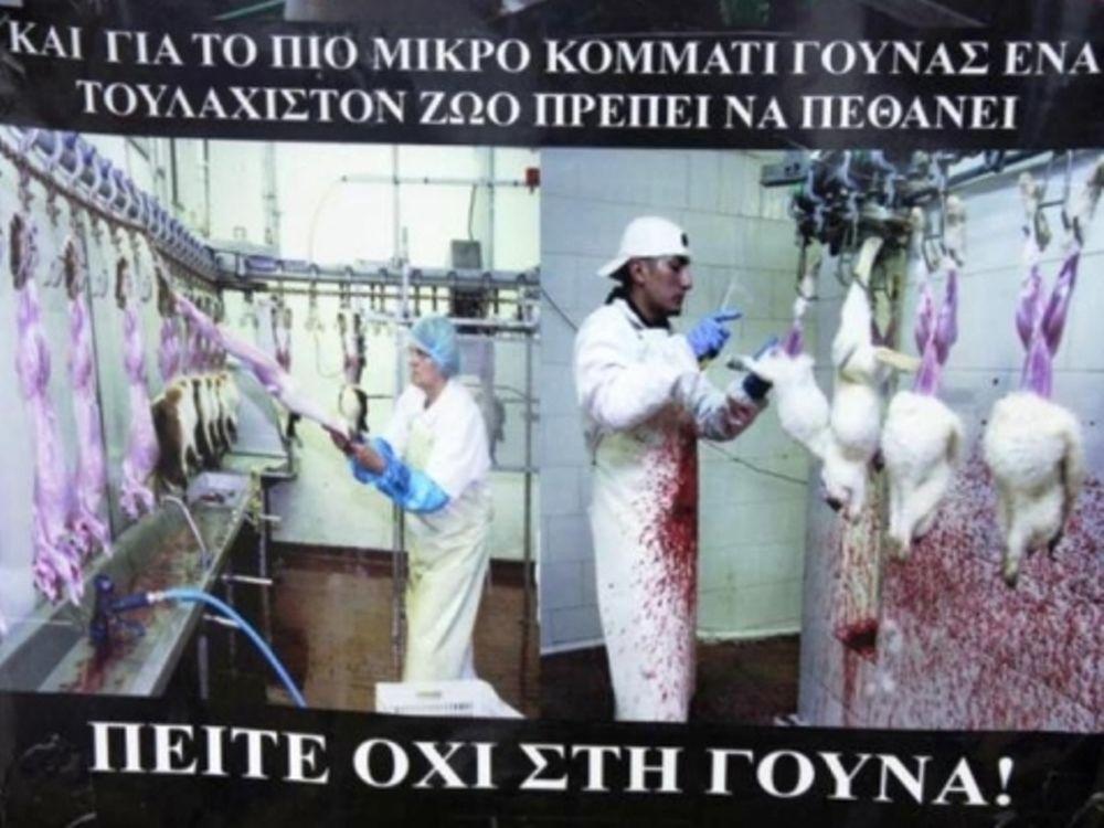 Διαμαρτυρία για εμπόριο γούνας