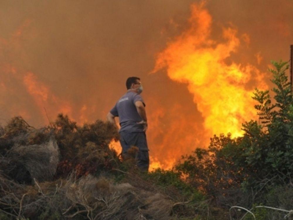 Δάση στο «έλεος» της φωτιάς