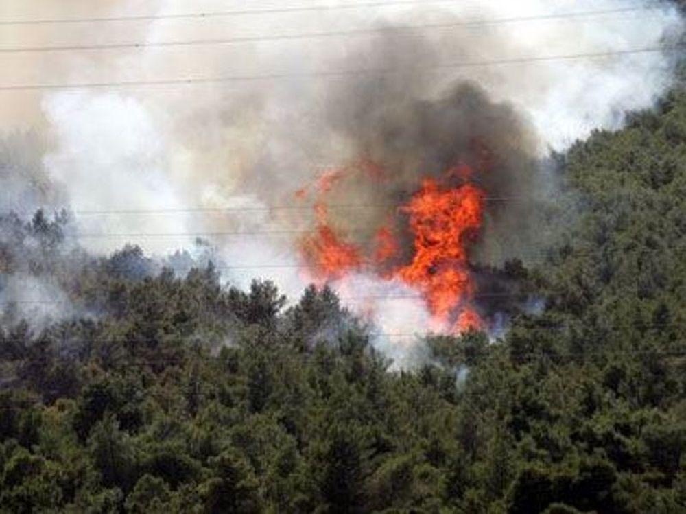 Πυρκαγιά στη Μυτιλήνη