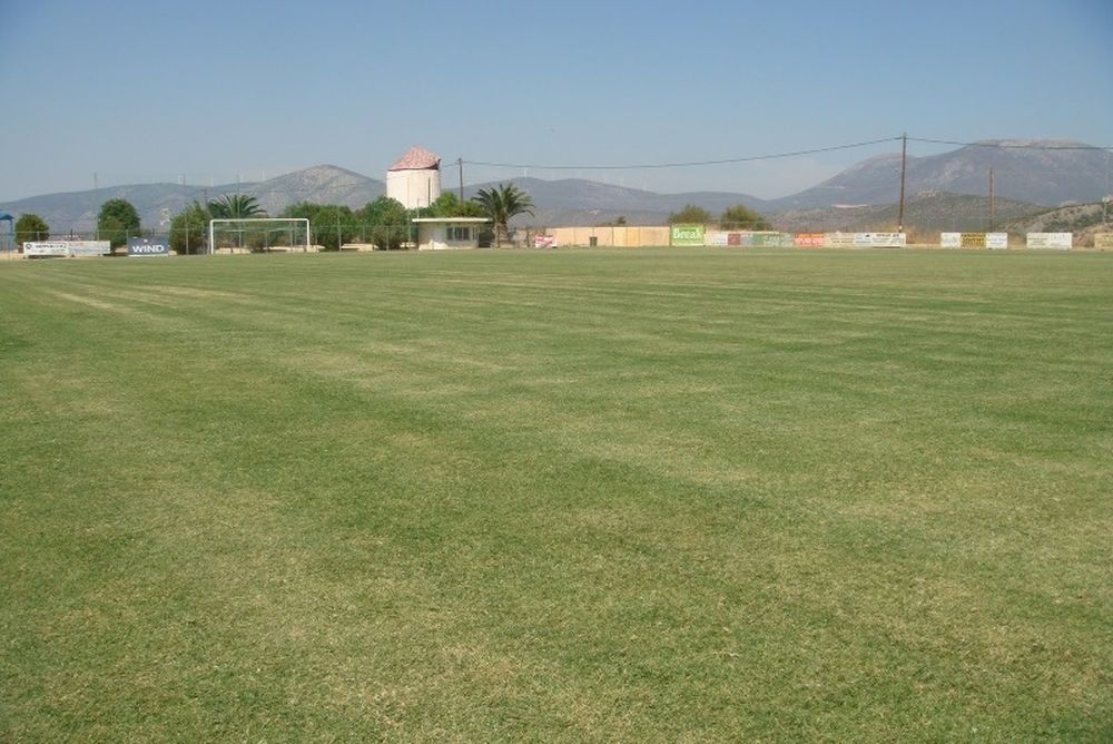 «Χαλί» το γήπεδο στο Κρανίδι