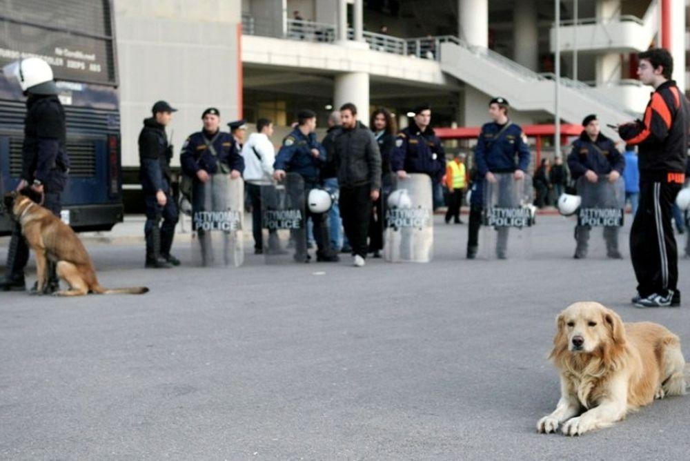 Τα σκυλιά της Αστυνομίας και ο… Τζακ!