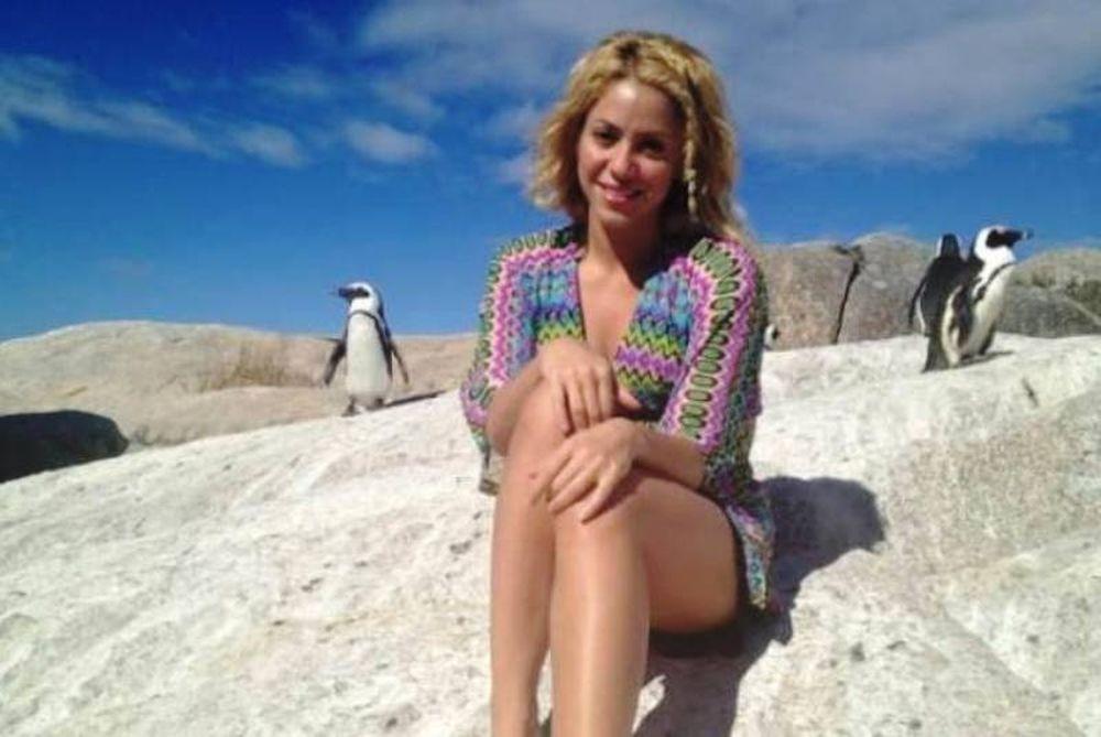 Βουτιές της Σακίρα, παρέα με... πιγκουίνους (photos)