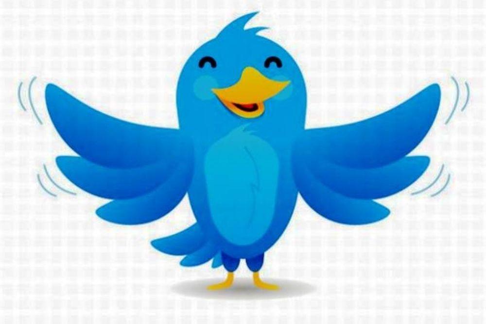 Λάρι, το πουλάκι του twitter
