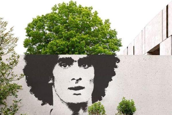 Μάντσεστερ Γιουνάιτεντ: Μέχρι και τα... δέντρα πιστεύουν πια τον Φελαϊνί (photos)