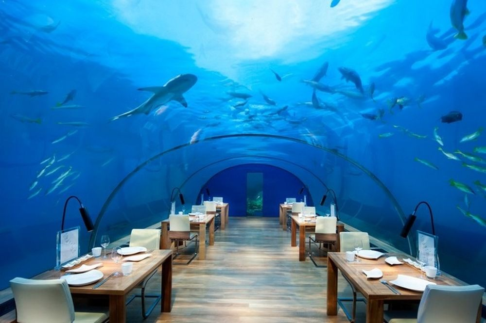 Απίστευτο: Ξενοδοχείο κάτω από τη θάλασσα για... μερακλήδες! (video)