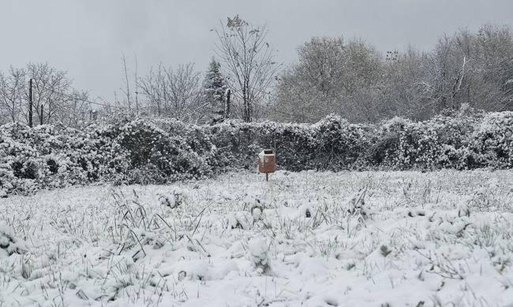 Καιρός: Σε κλοιό κακοκαιρίας η χώρα με χιόνια, παγετό και χαμηλές θερμοκρασίες