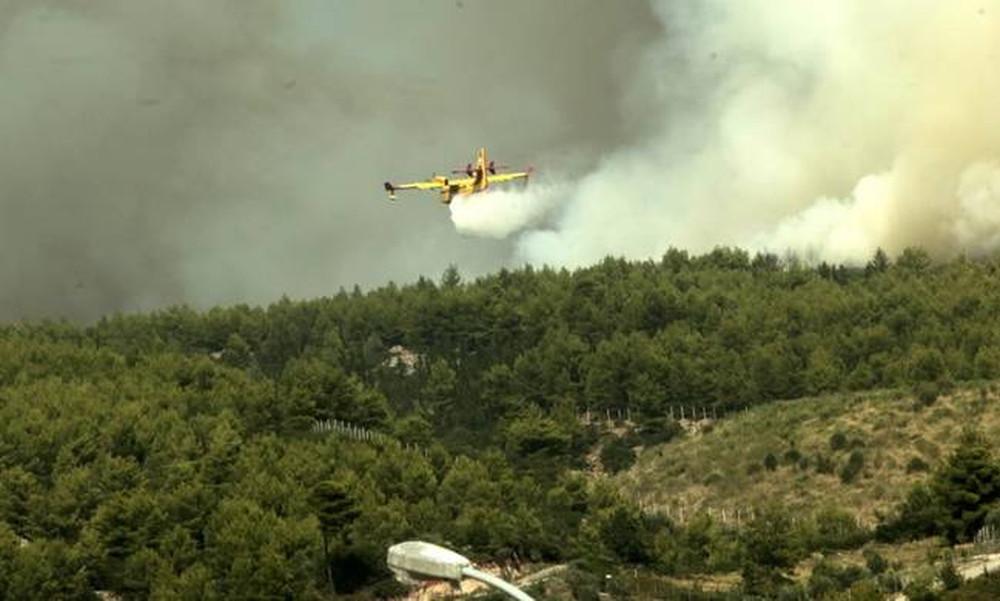Φωτιά ΤΩΡΑ: Χωρίς ενεργό μέτωπο το Καπανδρίτι - Φόβοι για αναζωπυρώσεις λόγω των ισχυρών ανέμων