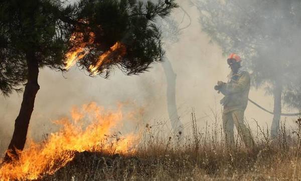 Φωτιά Τώρα: Σε ύφεση οι πυρκαγιές σε Αχαΐα και Αιτωλοακαρνανία