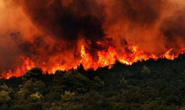Ομολογία 14χρονου: Έχω βάλει 18 φωτιές τον Αύγουστο